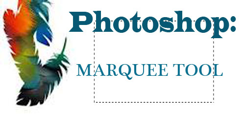 Photoshop Tool: Marquee Tool