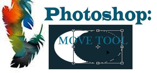 Photoshop Tool: Move Tool