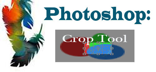 Photoshop Tool: Crop Tool